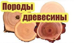 Древесина в строительстве: тенденции производства, потребления, поставок